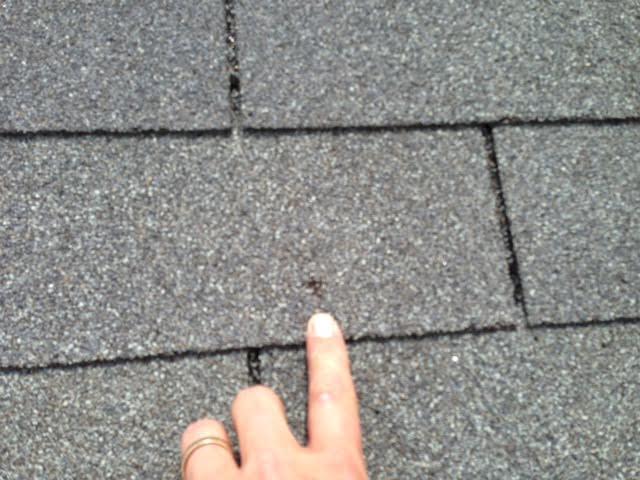 Roof Damage Hail